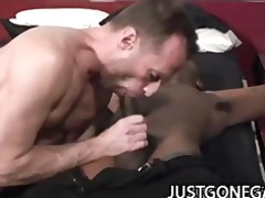 dark hawk - large darksome wang pounding on
